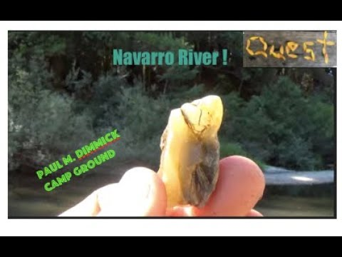 Rock Hounding In The Redwoods Quest 4 Treasure # 377 By : Quest For Details