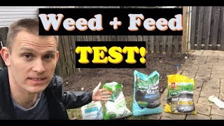 Weed and Feed Before and After PROOF!  |  Best Time to Overseed (LAWN CARE)