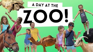 LIVING THE WAY Vlog // A Day At The Zoo