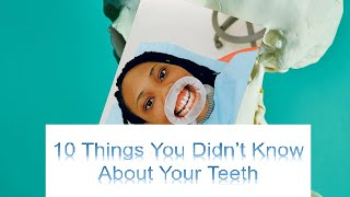 10 Things You Didnt Know About Your Teeth   Dental Facts
