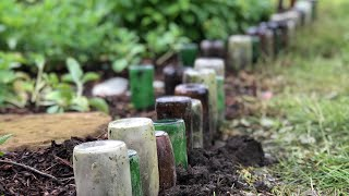 Creating Garden Art With Beer Bottles | Miss DeWalt
