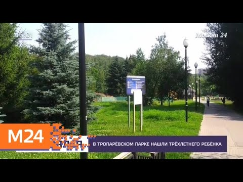 Родители потерявшегося в Тропаревском парке мальчика заплатят административный штраф - Москва 24