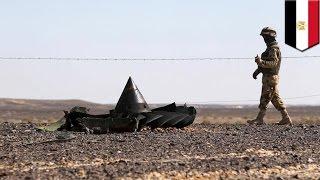Механик Египетских авиалиний подозревается в пронесении взрывчатки на борт А321