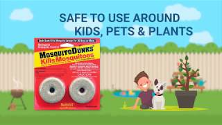 Mosquito Dunks & Mosquito Bits (a.k.a Mosquito Killer) product video