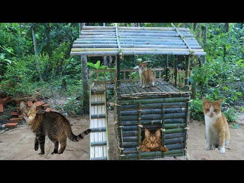 Build House Cat - Build Hut For Cat