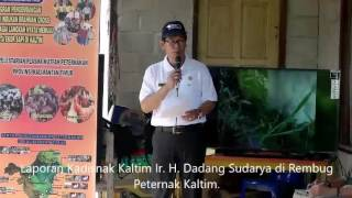 Rembug Peternakan Kalimantan Timur