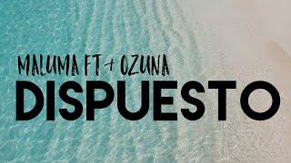 MALUMA FT. OZUNA   DISPUESTO( LETRA LYRICS + ENGLISH TRANSLATION)