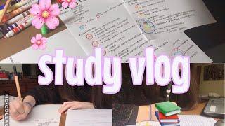 STUDY VLOG + COMPRINHAS|Lauraa Menezes