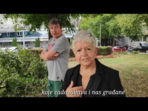 Stanovnici Sinđelićevog trga izašli da zaustave seču stabala zbog gradnje garaže