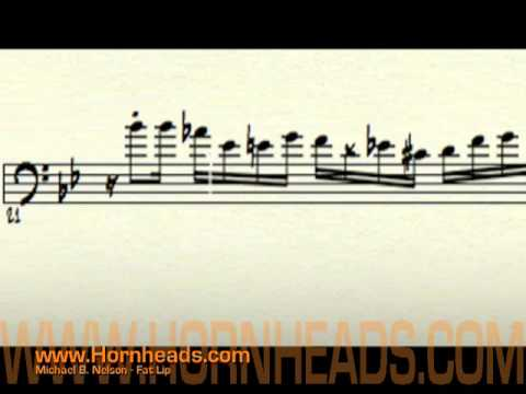 Michael B  Nelson - Music Profile | BANDMINE COM