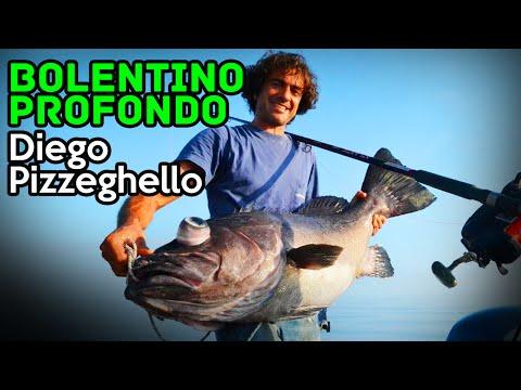 La pesca in Astrakan regionale su video di Volga