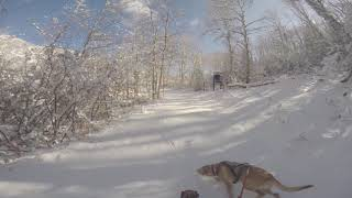 Sun Dog's Vlog: 1st Snowshoe of the season today!