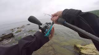 Рыбалка в широкой балке новороссийска