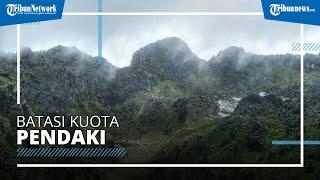 Jalur Pendakian Gunung Sumbing via Butuh Magelang Kembali Dibuka, Kuota Pendaki Dibatasi