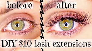 DIY $10 Lash Extensions At Home | Permanent Eyelashes For Cheap (Ardell Individual) // Lindsay Ann