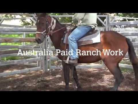 Australia Paid Ranch Work Video