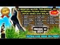 Download Lagu Masteran Burung Kacer Full Isian Tembakan Mewah Lengkap - Masteran Kacer Juara Nasional 2021 Mp3 Free