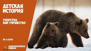 """Детская история """"Упорство, или Упрямство?""""   24.11.2018"""