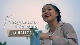 Download lagu Lia Haliza Pengamen Jalanan Mp3