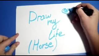 Draw my Life/Конная версия💟