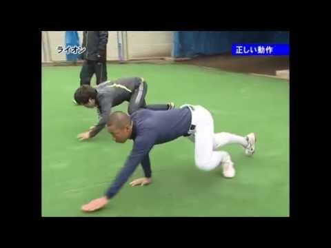 【動物本来のしなやかさを求めて】股関節を柔らかく使えるライオントレーニング