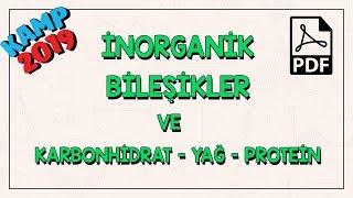 İnorganik Bileşikler ve Karbonhidrat-Yağ-Protein