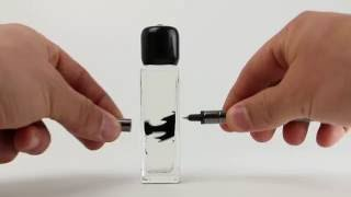 Magnetic Ink By Polar