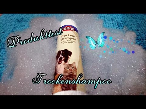 Trixie Trockenshampoo im Test // Produkttest