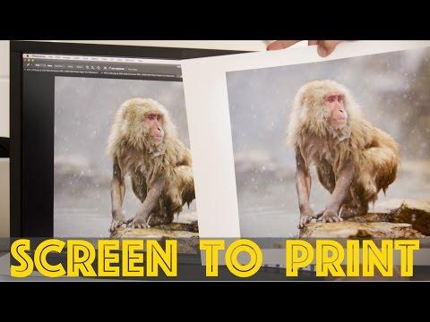 Prints that MATCH the Screen