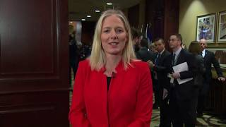 McKenna says she won't be deterred by climate plan critics