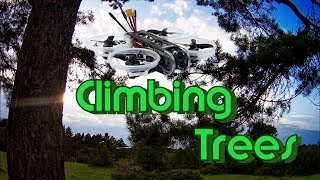 GEPRC Cinepro 4K - Climbing Trees - F7 - so smooth - Caddx Tarsier - FPV