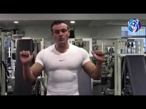Les muscles lépaule lanatomie