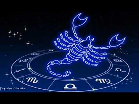 Шутливый гороскоп для женщин