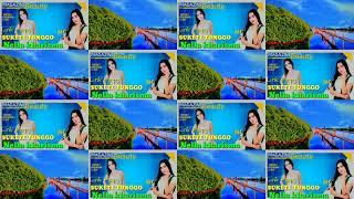 Lirik Dan Terjemahan Sukete Tonggo _ Nella Kharisma
