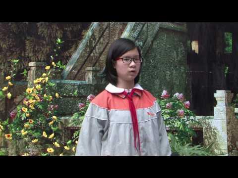 HỘI CHƠ VĂN HÓA DÂN GIAN XUÂN ĐINH DẬU 2017 - BGS TV