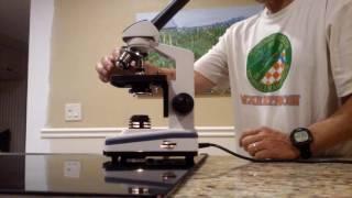 Microscope How to focus