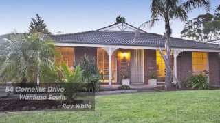 54 Cornelius Drive, Wantirna South. Agent: Peter Gindy 0448 778 819