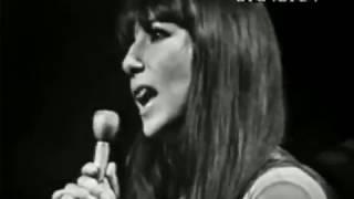 Cher – Wooden Heart (Elvis Presley Cover, Live 1965) ('Shindig!')