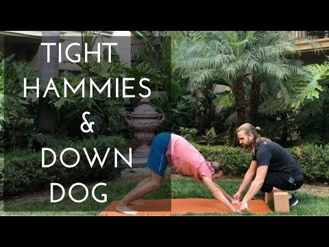 Down Dog For Tight Hamstrings (Yoga For Complete Beginners)