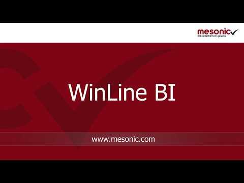 Kurzvorstellung des Business Intelligence-Tools WinLine BI
