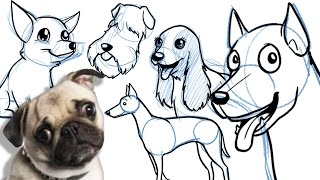 How To Draw A Cartoon Dog - All Breeds, And On Different Angles!