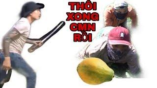 Bắt chước Tam mao TV đi ăn trộm không ngờ ra nông nỗi thế này|trộm đu đủ của ông tám d'ái