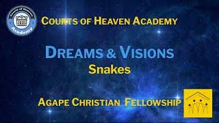 D6 - Part 3: Dreams & Visions - Snakes