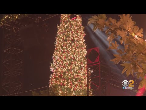 'Christmas At The Grove' Kicks Off With Tree Lighting, Festivities