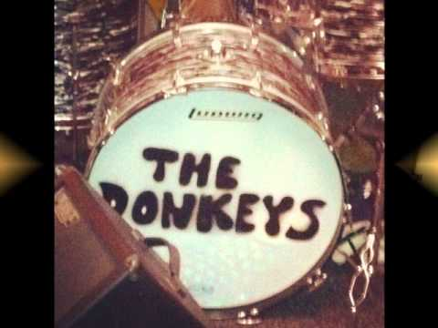 Gone Gone Gone (Song) by The Donkeys