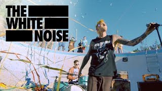 """I Lost My Mind In California"" The White Noise"