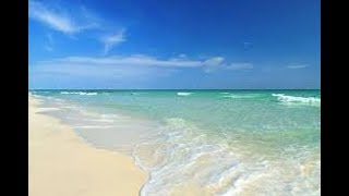 THE CLEAREST WATER EVER Siesta Key Beach !
