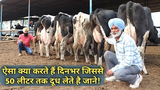 Daily Routine/Operation of Successful HF COWS DAIRY FARM in India 🇮🇳