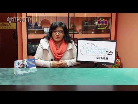 Programa 39 - Apelación de la detención preliminar - Luces Camara Derecho - EGACAL