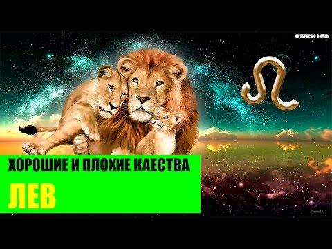 Хорошие и плохие качества Льва